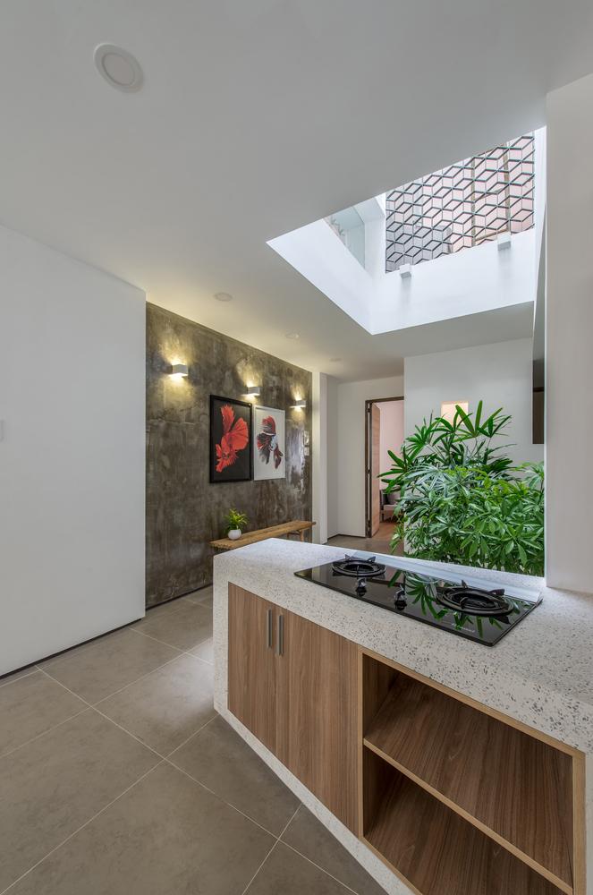 Nhà đẹp Sài Gòn - Backyard House - 13