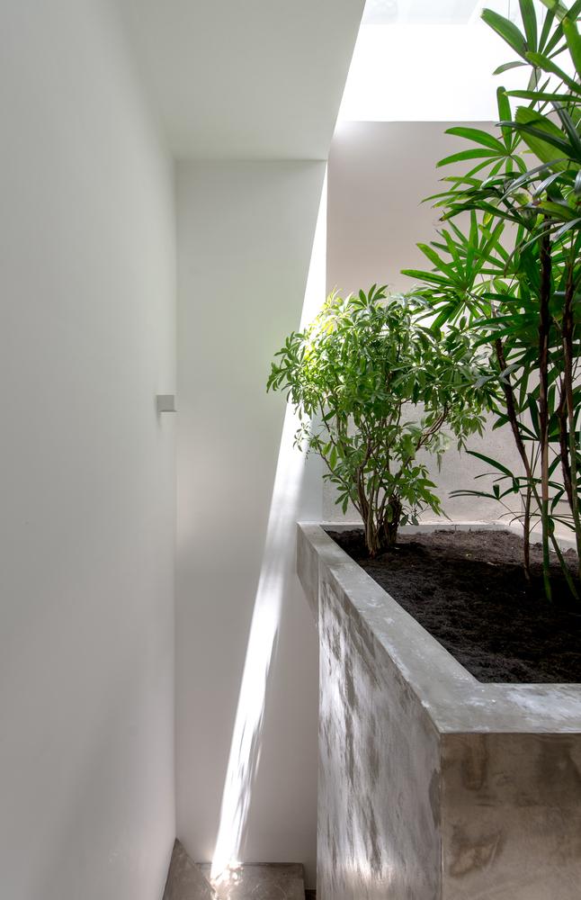 Nhà đẹp Sài Gòn - Backyard House - 9