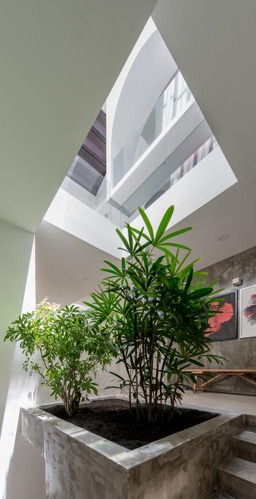 Nhà đẹp Sài Gòn - Backyard House - 10
