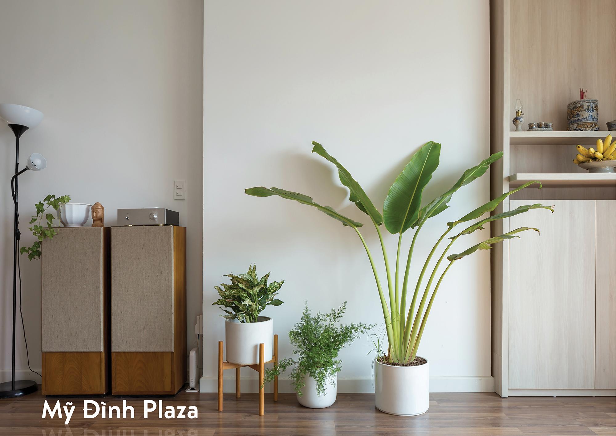 Mỹ Đình Plaza Apartment / HGAA